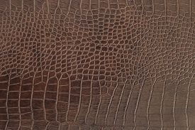 foto of crocodile  - The color brown crocodile leather texture background - JPG