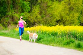 stock photo of working-dogs  - Woman runner running with dog in park on country road healthy lifestyle and training working out outdoors exercising in bright colorful environment. Inspirational and motivational concept. ** Note: Soft Focus at 100%, best at smaller sizes - JPG