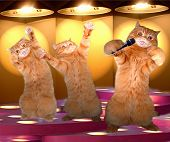 The Rap Cats