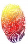 isolated colorfull finger print background