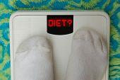 Bathroom Scale Showing Diet?