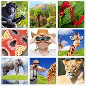 Africa collage composed of pictures with safari theme.