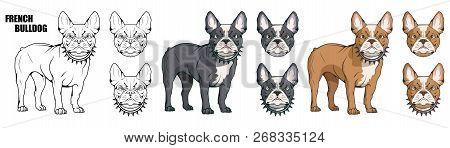 French Bulldog Pet Logo Dog