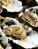 rohe Austern vor dem Kochen