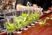 Highball glasses with mint leaves - preparing mojitas