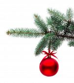 stock photo of christmas ornament  - Christmas ornament on the tree - JPG