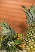 Pineapple Delicious Fruit Tropicale - Ananas Comosus poster