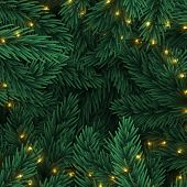 Christmas Tree Branches. Frame Of Green Branch Of Pine And Gold String Garland Lights. poster