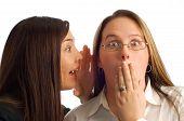 Businesswomen Gossiping