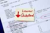 Lower the cholesterol concepts of better health