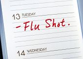 Mark the date on the day planner to have a flu shot