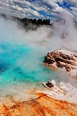 Geyser Beauty At Yellowstone National Park