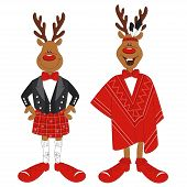 Vector illustration of cartoon Christmas reindeer
