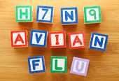 stock photo of avian flu  - H7N9 avian flu toy block - JPG