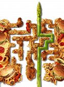 picture of junk  - Healthy Solutions and health choice nutrition concept with a group of greasy junk food in the shape of a maze or labyrinth and an asparagus finding the answer to diet challenges on a white background - JPG