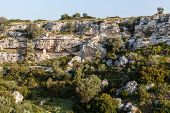 foto of ravines  - a harsh cliff located in the Riggio ravine near Grottaglie a small town in south Italy - JPG