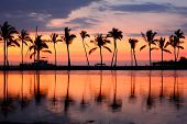 stock photo of tranquil  - Paradise beach sunset or sunrise with tropical palm trees - JPG