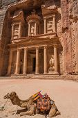 stock photo of treasury  - Al Khazneh or The Treasury in nabatean petra jordan middle east - JPG