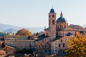 Cathedral Of Urbino