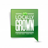 picture of local shop  - locally grown food sign illustration design over white - JPG