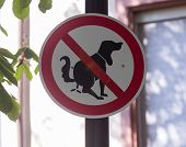 Sign In Germany Prohibiting Dog Waste In Street