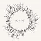 Grape vine sketch frame round label