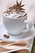 Cup of coffee with whipped cream, chocolate and anise star