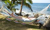 Tourist Asleep In Hammock By The Caribbean Sea