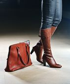 Fashionable shoe and bags leather products