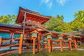 Kasaga Taisha Shrine in Nara