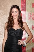 vLOS ANGELES - JAN 12:  Shannon Elizabeth at the HBO 2014 Golden Globe Party  at Beverly Hilton Hote