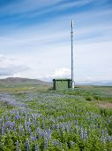Mobile phone telecommunication radio antenna tower in a summer blooming field. Concepts: communication, environment, nature, electromagnetic pollution. Iceland, Europe.