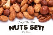 foto of pecan nut  - Background texture of assorted mixed nuts including cashew nuts pecan nuts almonds - JPG