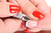 beauty salon, manicure applying, cutting the cuticle with cutter