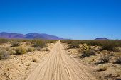 Sandy Road In The Mojave Desert
