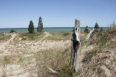 Sparsely Vegetated Sand Dune Overlooking Lake Huron