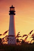 stock photo of buildings  - Cape Florida Lighthouse under sunset at Key Biscayne Florida United States - JPG