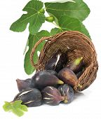 Figs Scattered From A Wicker Basket