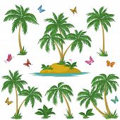 image of tropical plants  - Tropical set - JPG