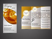 Tri-fold business brochure