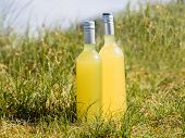 Bottles With Fresh Elderflower Lemonade