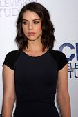 LOS ANGELES - MAY 19:  Adelaide Kane at the CBS Summer Soiree at the London Hotel on May 19, 2014 in