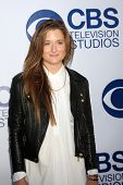 LOS ANGELES - MAY 19:  Grace Gummer at the CBS Summer Soiree at the London Hotel on May 19, 2014 in