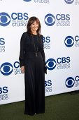 LOS ANGELES - MAY 19:  Mary Steenburgen at the CBS Summer Soiree at the London Hotel on May 19, 2014