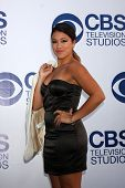 LOS ANGELES - MAY 19:  Gina Rodriguez at the CBS Summer Soiree at the London Hotel on May 19, 2014 in West Hollywood, CA