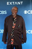 LOS ANGELES - JUN 16:  Louis Gossett Jr at the