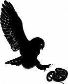 owl snake
