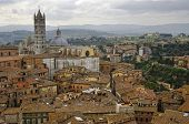 View Of Siena Town.