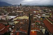 Rooftops View Of Lucca, Tuscany, Italy