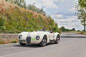 Jaguar C-type (1952) In Mille Miglia 2014